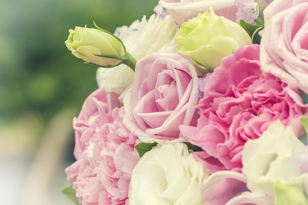 Colorful multiplicity roses background, shallow depth of field. retro vintage  filter for background and text. Stock Photo
