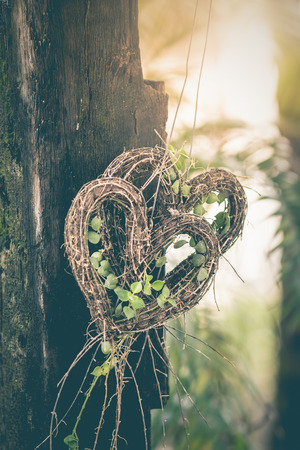 Heart shaped tree is a symbol of love, as a background image and illustration.