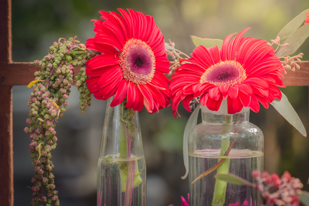 gerbera flowers in vase adorned in beautiful colors vintage used as background text. Stock Photo