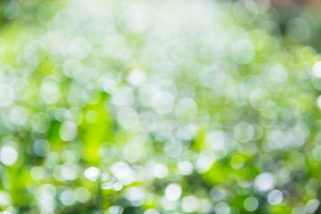 compounding: Bokeh leaves of the sunlight shifts compounding a beautiful abstract. Stock Photo