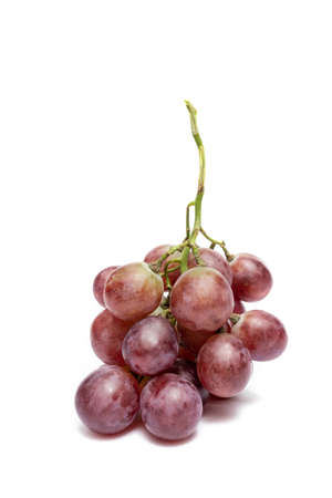 Ripe red grape. bunch of fruits isolated on white background.