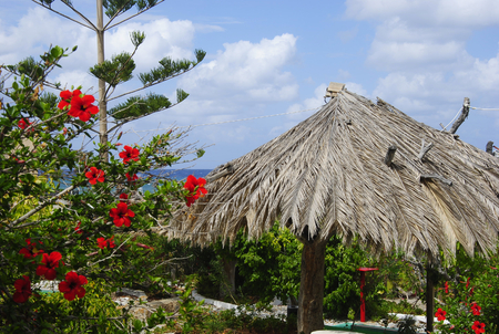 Straw hat with red flowers near the coast of Sissi on Crete in Greece