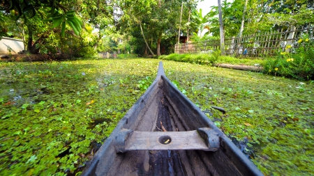 Boat moving along canal at sunset in Kerala Backwaters photo