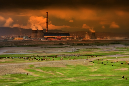polluted: Sheeps grazing next to power plant, animal toxication concept