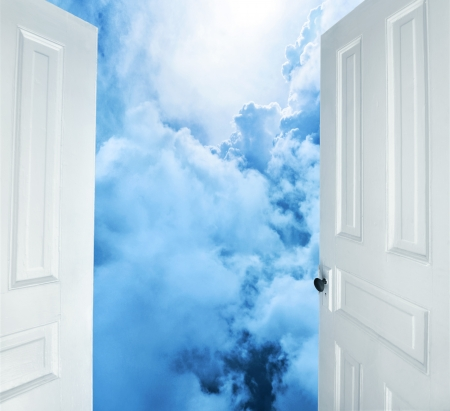 realm: white doors opening to dreams and success