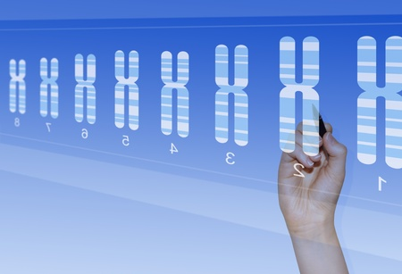 Chromosome research for biomedical analysis of genetic abnormalities photo