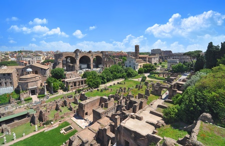Roman Forum, as seen from the Palatine Hill photo