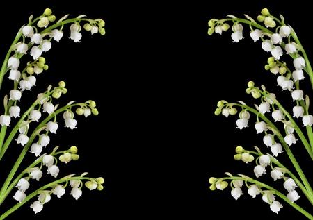Maiglöckchen Hintergrund mit Kopie Raum im Zentrum für Text Standard-Bild