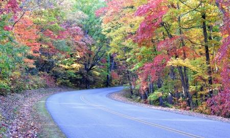 Herbstfarben auf dem Blue Ridge Parkway in der Nähe Asheville, North Carolina