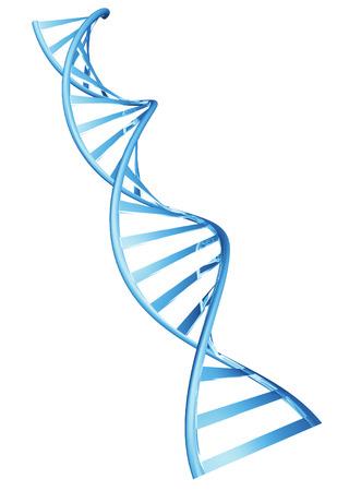 3D dubbele helix spiraal structuur van een menselijk DNA-streng