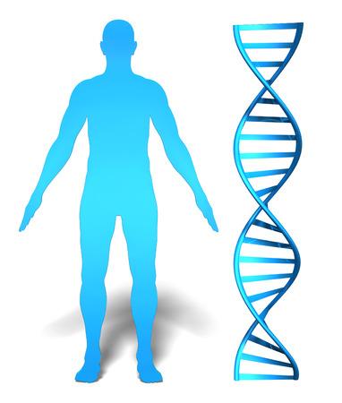 genetica: Concetto di ricerca e le informazioni genetiche del gene umano con silhouette di un uomo s accanto a una spirale del DNA
