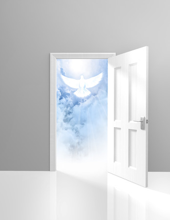 Spirituality and religion concept of an open door and a heavenly white dove 版權商用圖片