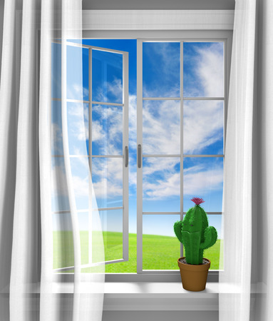 windowsill: Cute flowering cactus sitting in a sunny house window Stock Photo