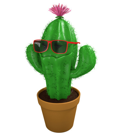 cool man: Cool cactus man houseplant with trendy sunglasses and a big grin