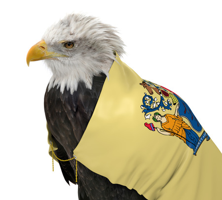 federal states: American bald eagle wearing the New Jersey state flag Stock Photo