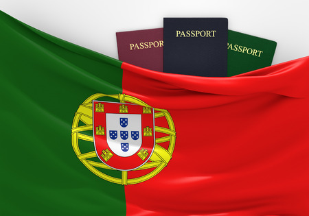 customs official: Travel and tourism in Portugal, with assorted passports