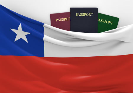 customs official: Travel and tourism in Chile, with assorted passports