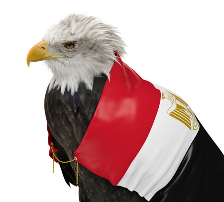Powerful eagle wearing the country flag of Egypt photo