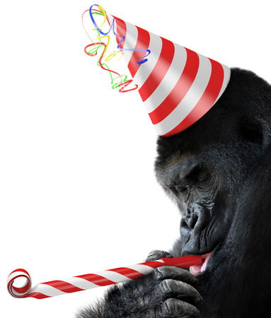 Gorilla party animal with a striped birthday hat and noisemaker horn photo