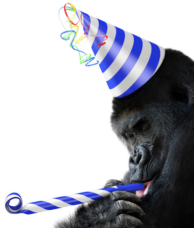 noisemaker: Gorilla party animal wearing a striped birthday hat and blowing a noisemaker