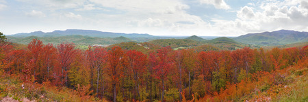 wnc: Wide panorama of the Appalachian Mountains with bright red autumn leaf colors Stock Photo