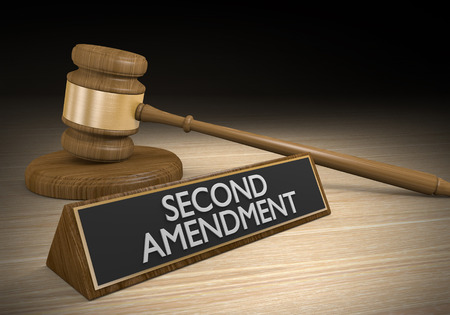 amendment: Second Amendment right to bear arms and the gun control legal challenge