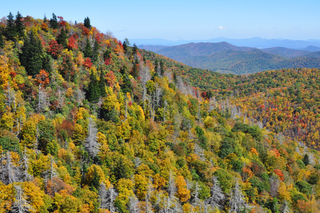 wnc: Autumn landscape in the Blue Ridge Mountains section of the Appalachian range Stock Photo