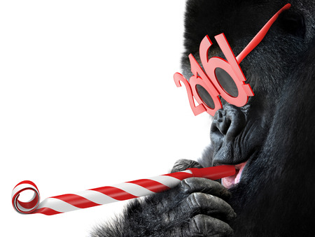funny animals: Funny gorilla with noisemaker and 2016 glasses for Year of the Monkey Chinese zodiac