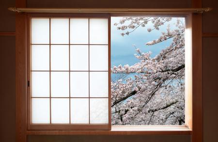 arbol de cerezo: Japonesa tradicional ventana deslizante y hermosas flores del árbol de cerezo Foto de archivo