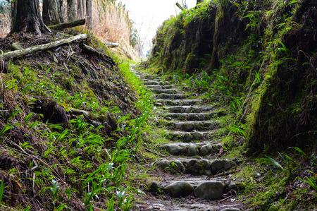 Peaceful stone nature path on Mount Yoshino in Nara, Japan Stock Photo