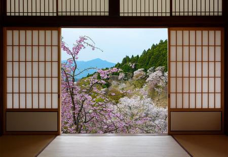 和風引き戸や春の桜の美しい風景