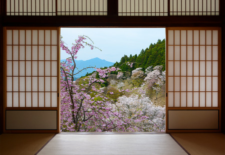 Japanese sliding doors and beautiful landscape of cherry trees in spring Foto de archivo