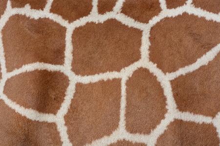 spot: Animal background texture of a giraffe spots pattern