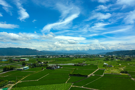 Campos agrícolas pacíficos para los arrozales y la agricultura de loto bajo un cielo de verano en el condado de Yunlin, Taiwán Foto de archivo - 64982322