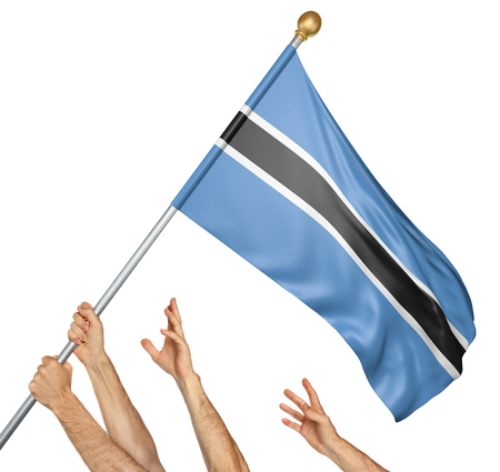 botswanan: Team of peoples hands raising the Botswana national flag, 3D rendering isolated on white background