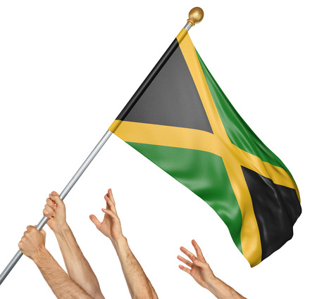 activism: Team of peoples hands raising the Jamaica national flag, 3D rendering isolated on white background