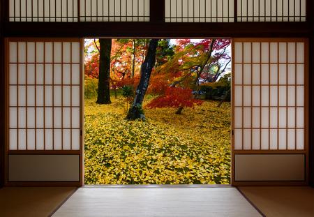 Japoneses puertas de madera correderas abiertas a una vista del otoño de hojas de ginkgo amarillo caídos