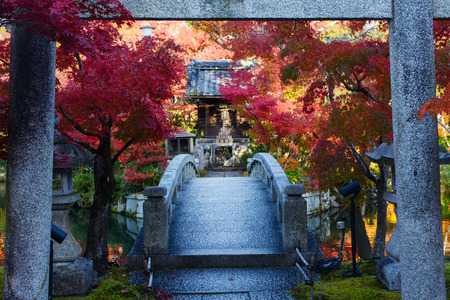 Japanese torii gate over a bridge to a pond island with a prayer shrine and red fall maple trees