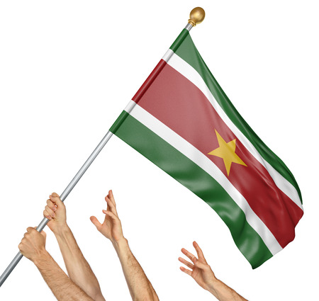 Team of peoples hands raising the Suriname national flag, 3D rendering isolated on white background Stock Photo