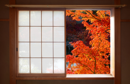 Open Japanese sliding window and bright red fall maple leaves