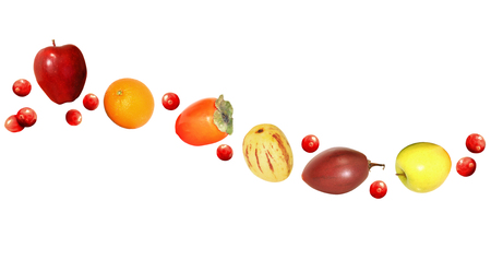 pepino: Fresh fruit wave design with apples, oranges, persimmons, and cranberries