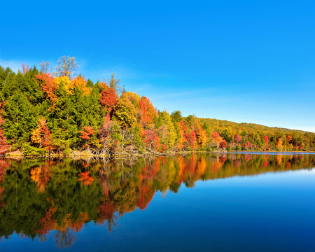 Fall landscape and autumn trees reflection at Bays Mountain Lake in Kingsport, Tennessee