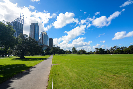 Grassy open space at The Domain, a huge park next to the Sydney central business district in Australia