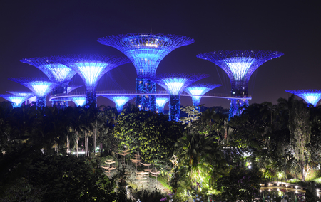 SINGAPORE - SEPTEMBER 8, 2018 - The artificial glowing Supertree Grove rising above the night landscape at Gardens by the Bay Sajtókép
