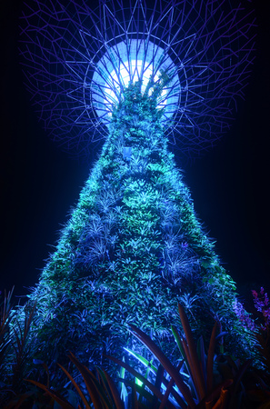 SINGAPORE - SEPTEMBER 8, 2018 - Bromeliads, ferns, and orchids glow in the night lighting of a giant supertree at Gardens by the Bay Sajtókép