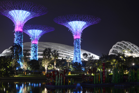Supertrees at night in front of the Flower Dome and Cloud Forest at Gardens by the Bay, Singapore