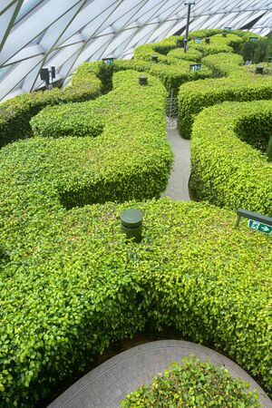 A garden hedge maze at Jewel Changi Airport welcomes visitors to get lost while in transit Stockfoto