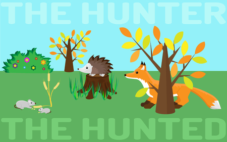 chain food: The hunter or the hunted. Food chain in a wild life. Mouse, hedgehog, fox.