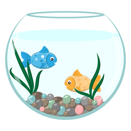 gold fish bowl: Golden and blue fish in the round aquarium. Cartoon stile