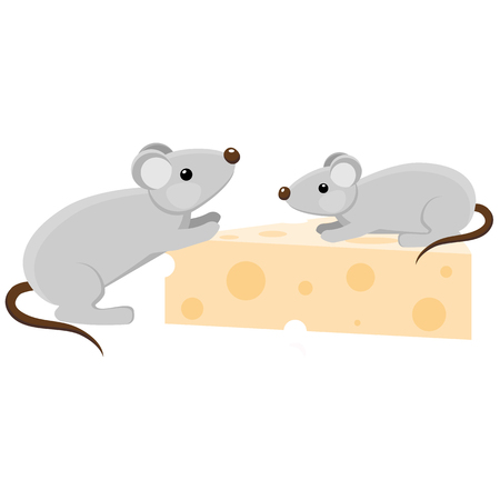 cheese cartoon: Two grey mouses with a piece of cheese. Cartoon style